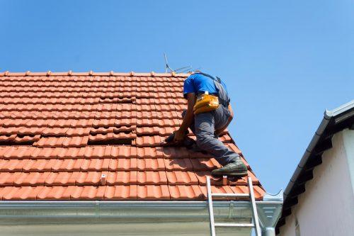 roof repair {city}